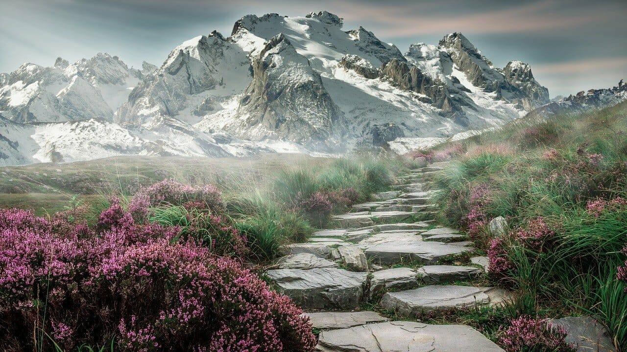 Arrêtez D'essayer De Vendre Vos Produits… Utilisez Le Principe De L'Escalier À La Place…